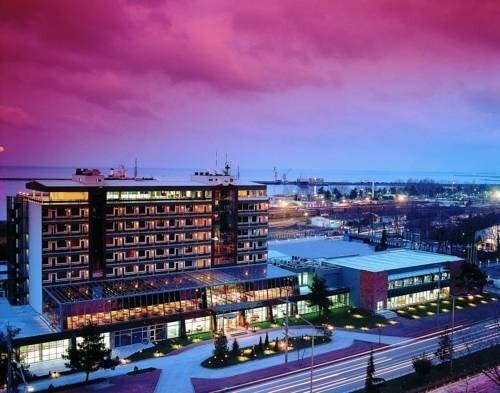 Buyuk Samsun Hotel