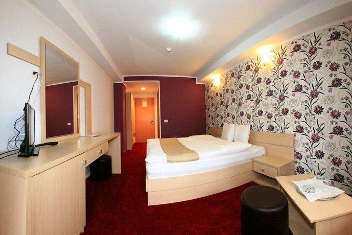 Hotel Roman Maramures