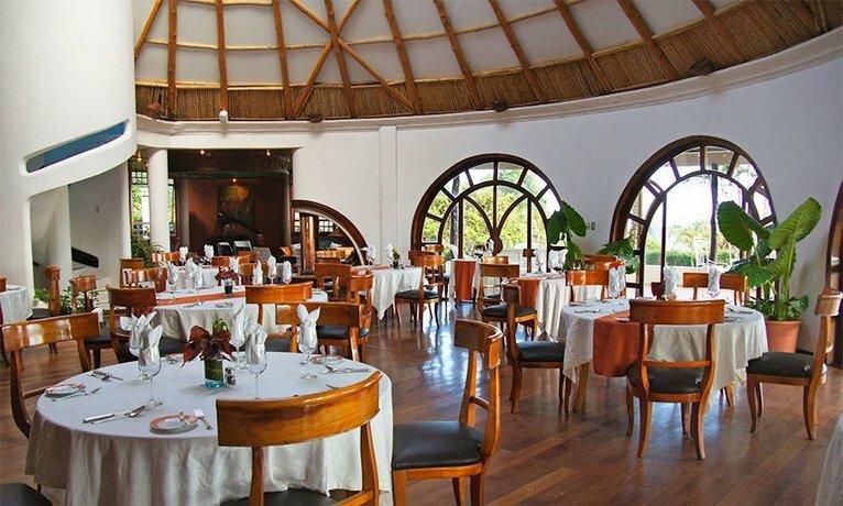 Royal Palm Galapagos