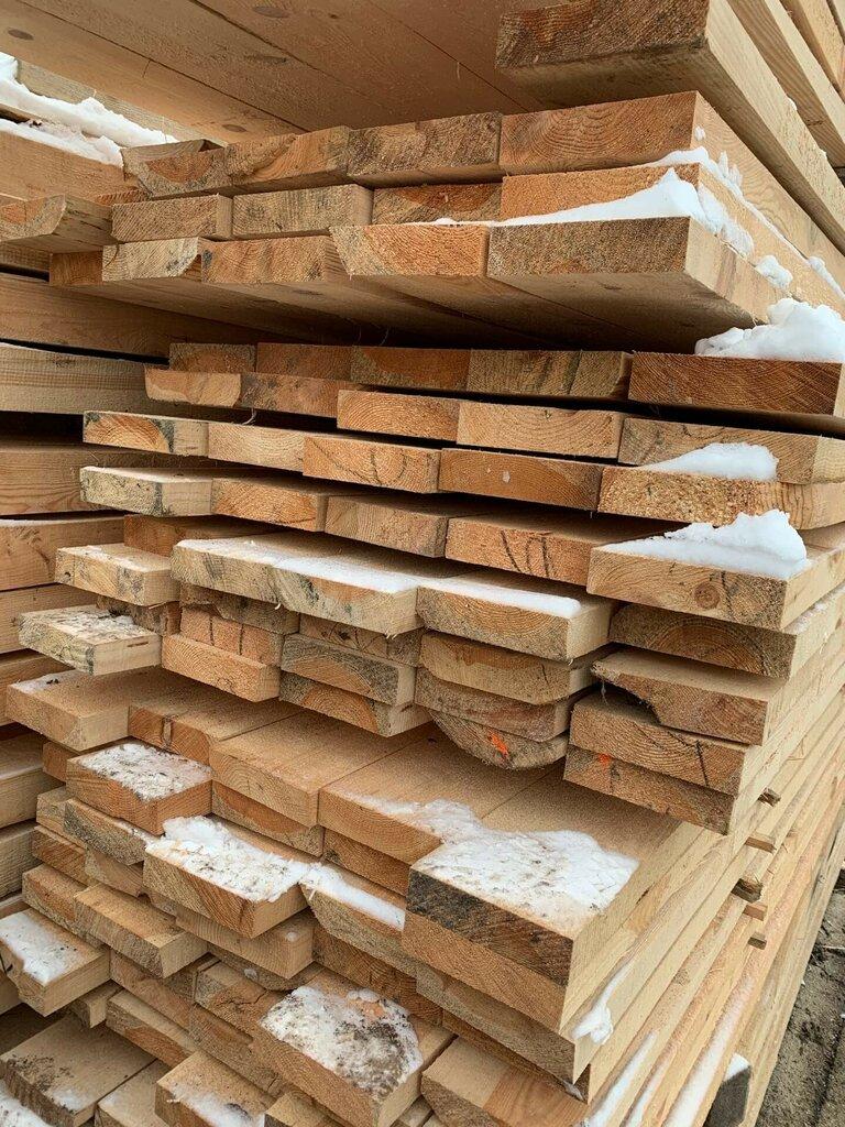 лесозаготовка, продажа леса — Мирнат — Минская область, фото №2