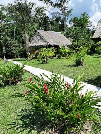 Lupuna Jungle Tours And Expeditions