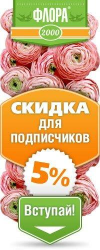 доставка цветов и букетов — Флора2000.ру — Москва, фото №1