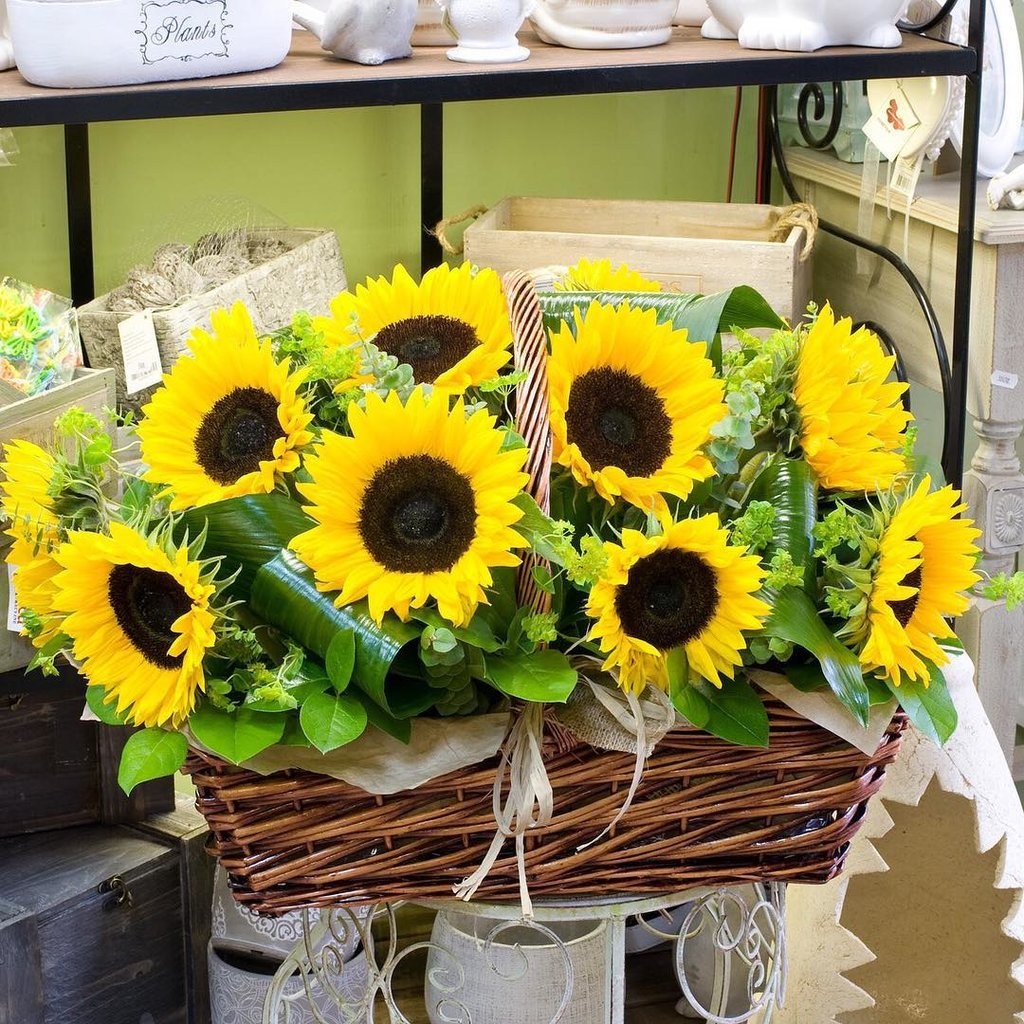 Тюмень, букет цветов из подсолнухов москва купить