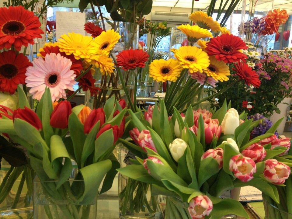 Адреса магазины оранж цветов в спб, цветов