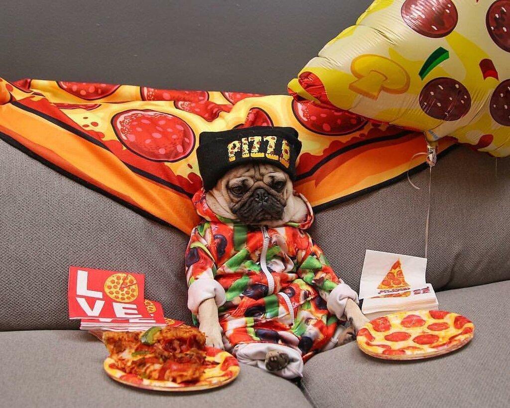 Картинки приколами, картинки роллы пицца приколы