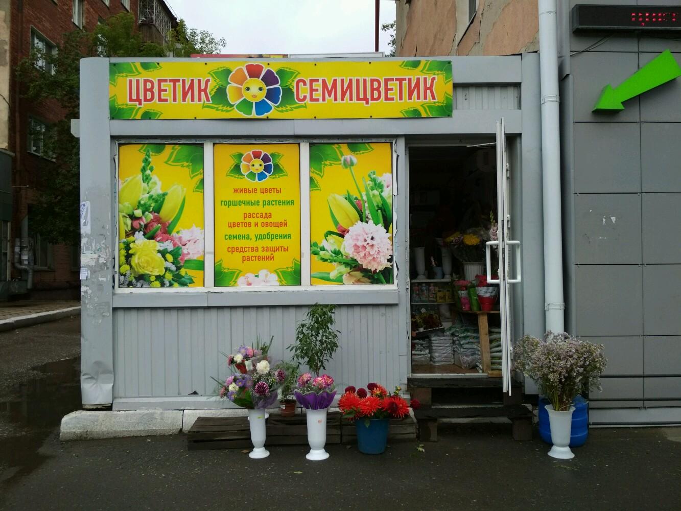 Магазин цветов ип яковлева омск