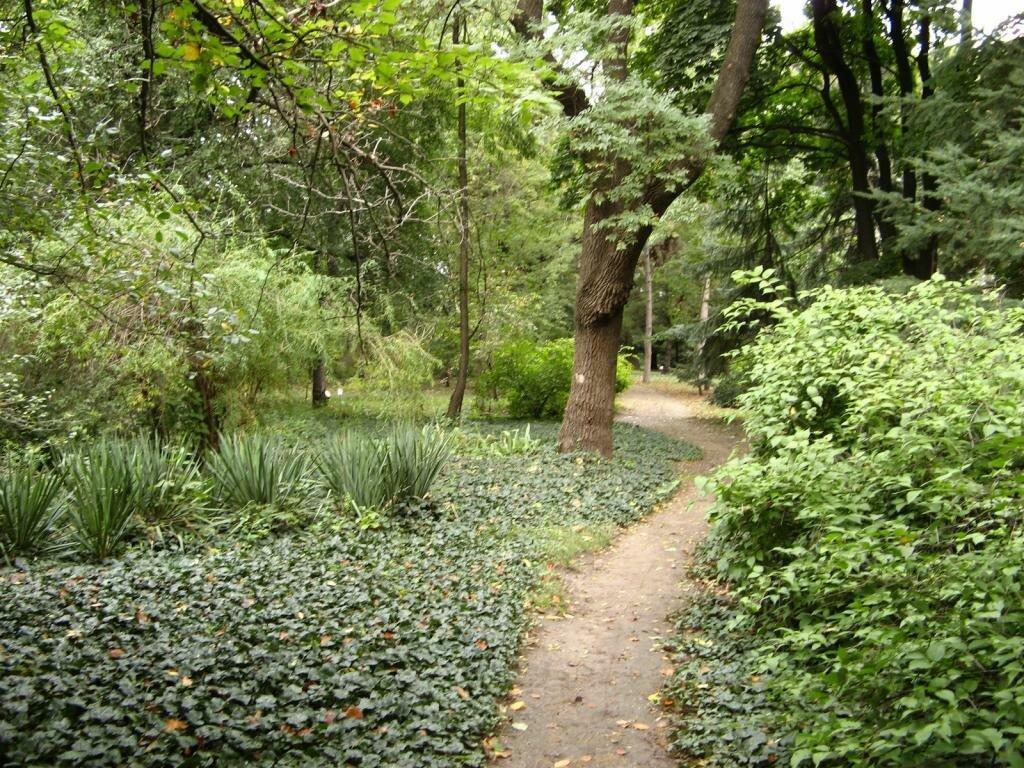 вам все ботанический сад одесса фото инструментах, которые помогут