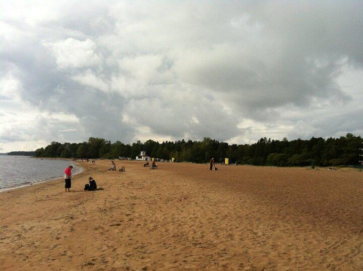 пляжей зеленогорск ленинградская область фото пляжей и набережной энгри бёрс космосе