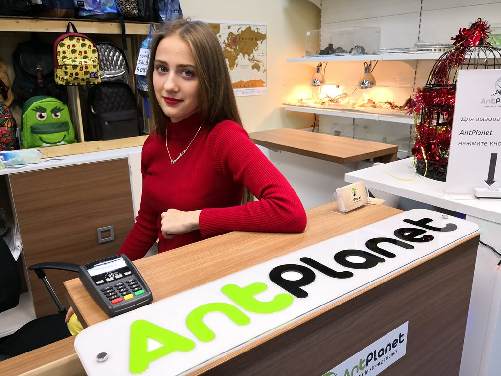 интернет-магазин — AntPlanet — Москва, фото №1