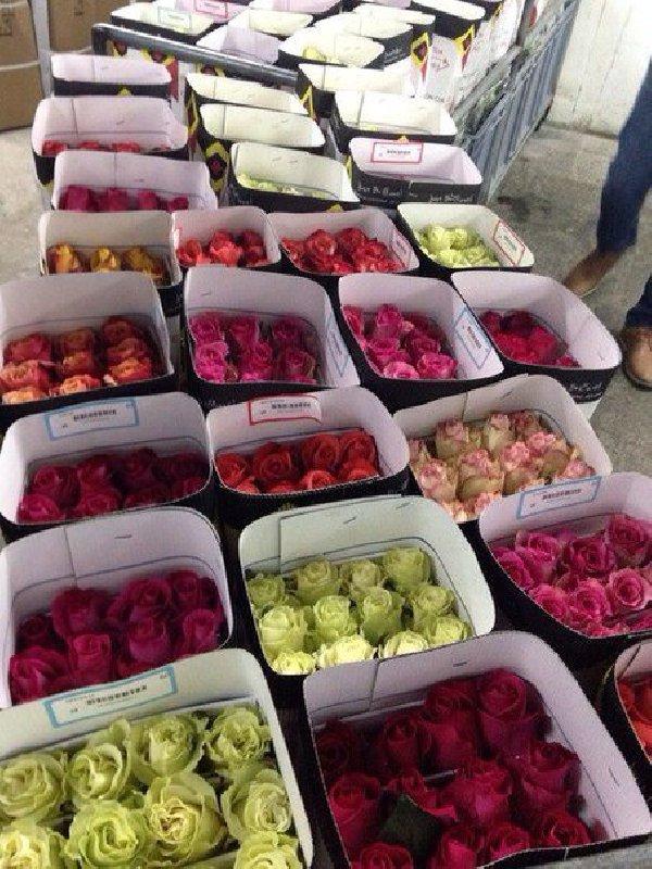 Доставка цветы в регионы россии оптом, букет цветов