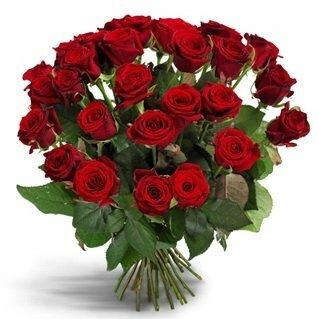Домашние цветы доставка цветов владимирская область г александров салон