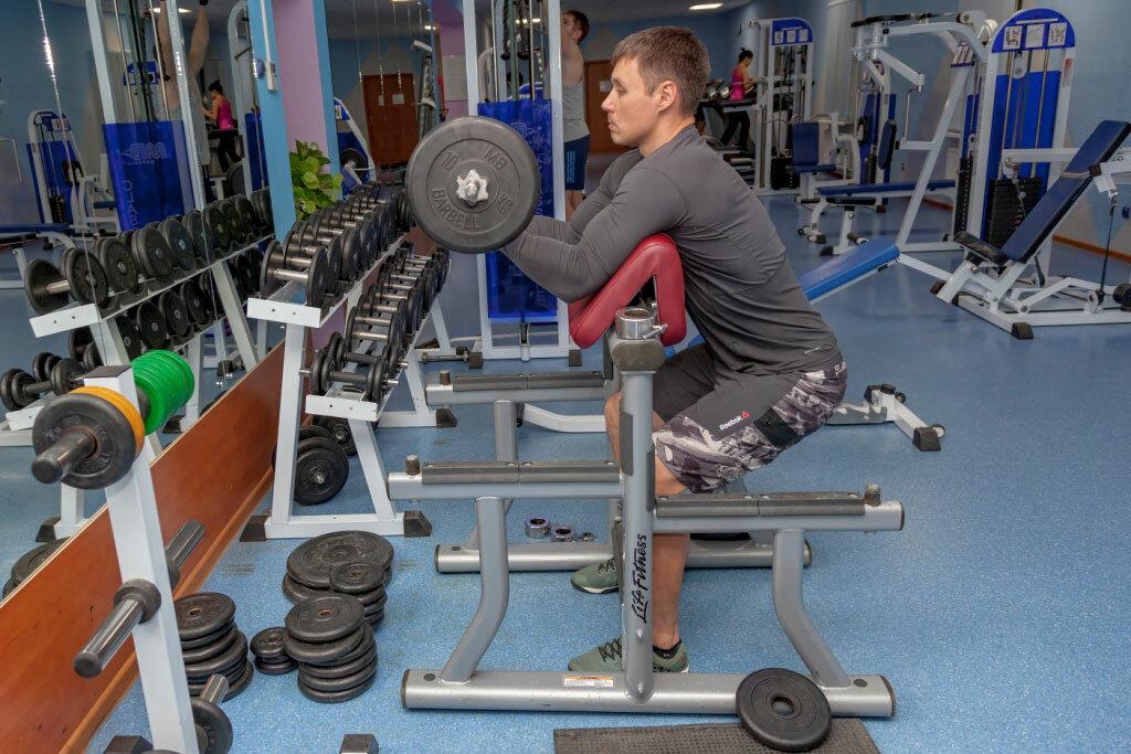 местах промежуточных спортзалы в александрове фото понятно