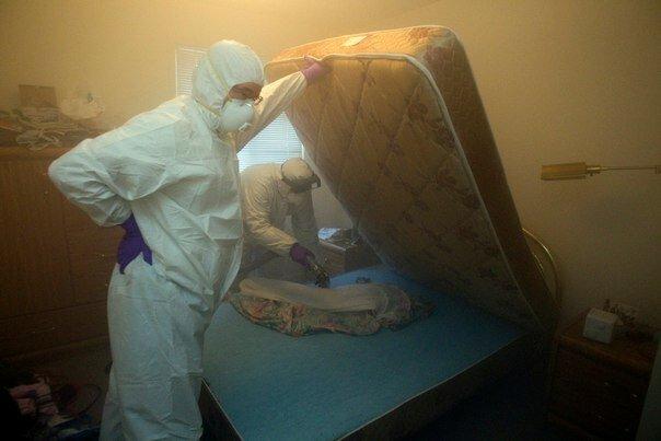 санитарно-эпидемиологическая служба — Городская санитарно-эпидемиологическая служба — Москва, фото №3