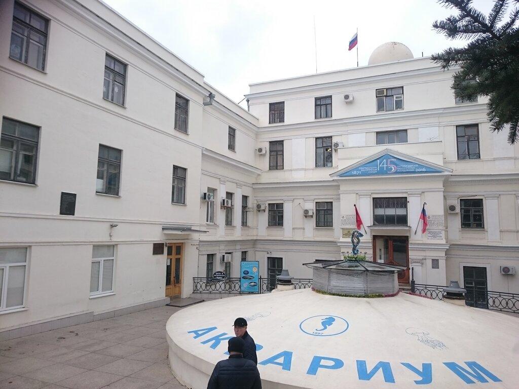 музей — Аквариум-музей — Севастополь, фото №2