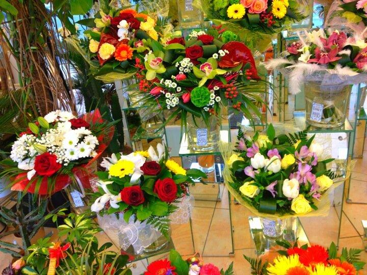 Адреса магазины оранж цветов в спб, зеленых листьев
