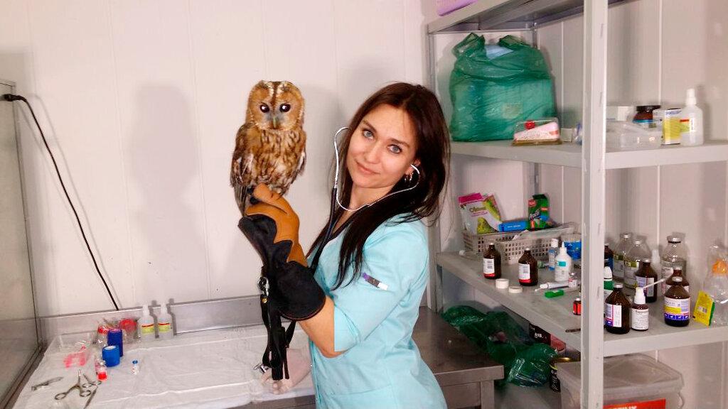 ветеринарная клиника — Эклектус — Москва, фото №2