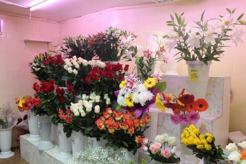 Магазины цветов архангельск адреса и часы работы