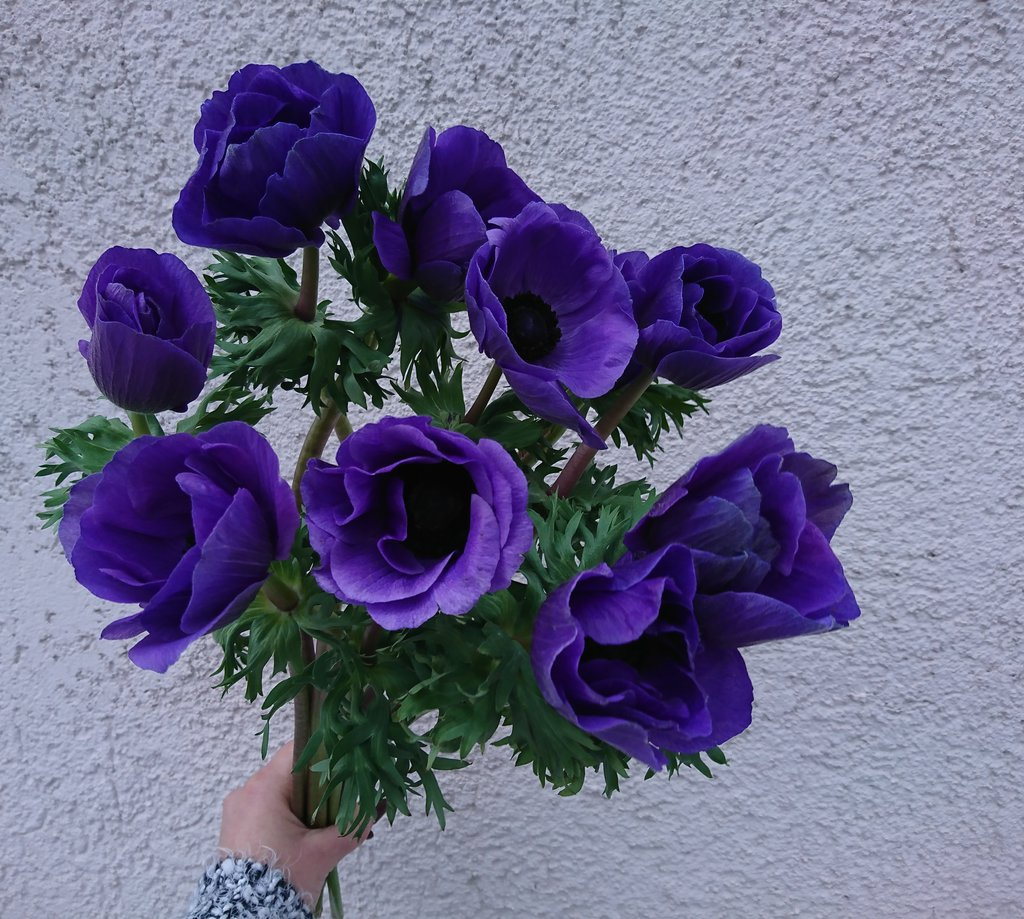 магазин цветов — Цветочная дизайн-студия — Москва, фото №9