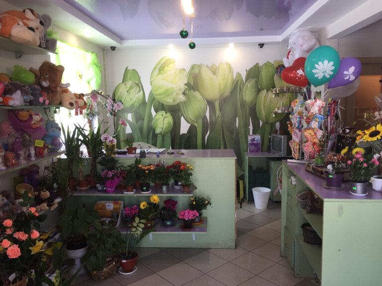 Оазис магазин цветов