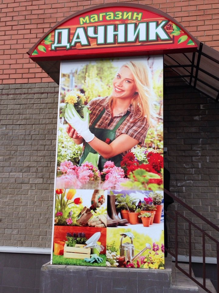 Вывески на магазин фото семена