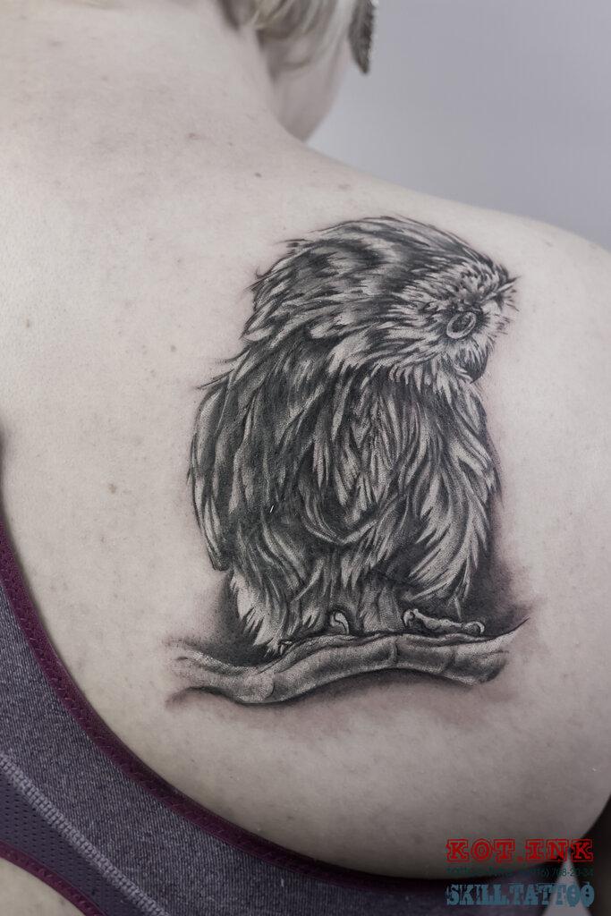 тату-салон — Tattoo Kot. Ink — Солнечногорск, фото №1