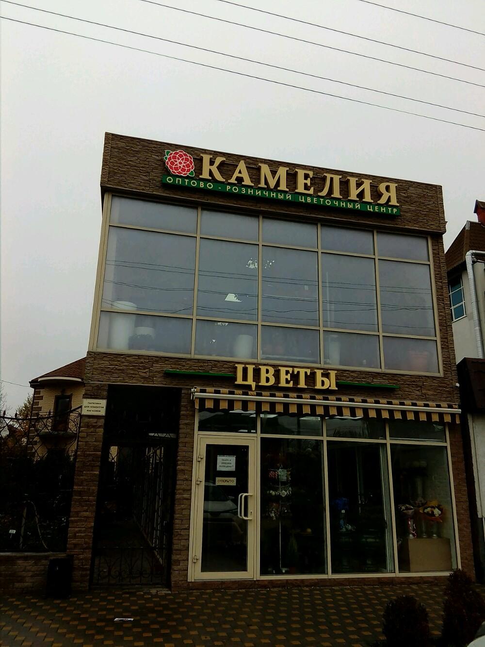 Камелия оптовый магазин цветов