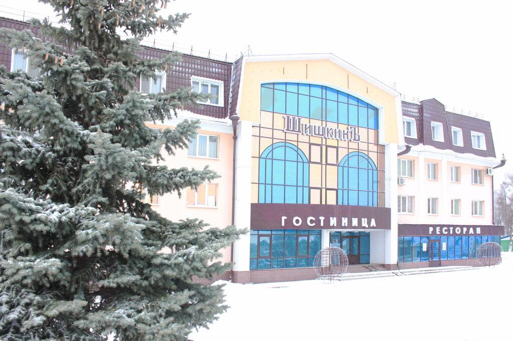 гостиница — Шишкин — Елабуга, фото №6