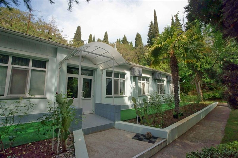 Пальмира сад