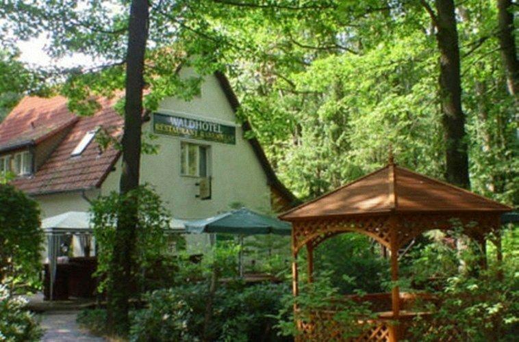 Wald Frohnau