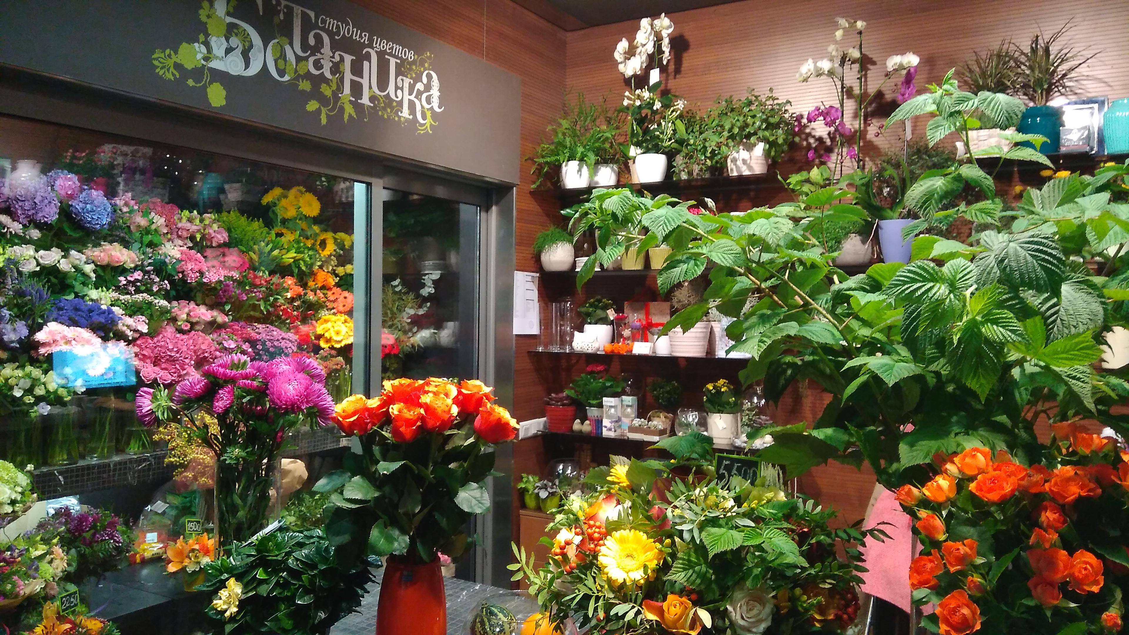 Магазин цветы на б, бронной
