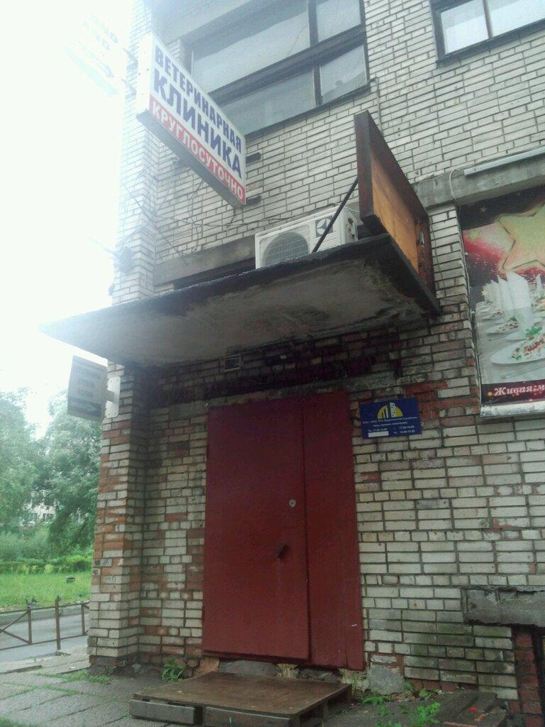 ветеринарная клиника — Ветеринарная клиника Доктора Бурлакова В. П. — Санкт-Петербург, фото №3