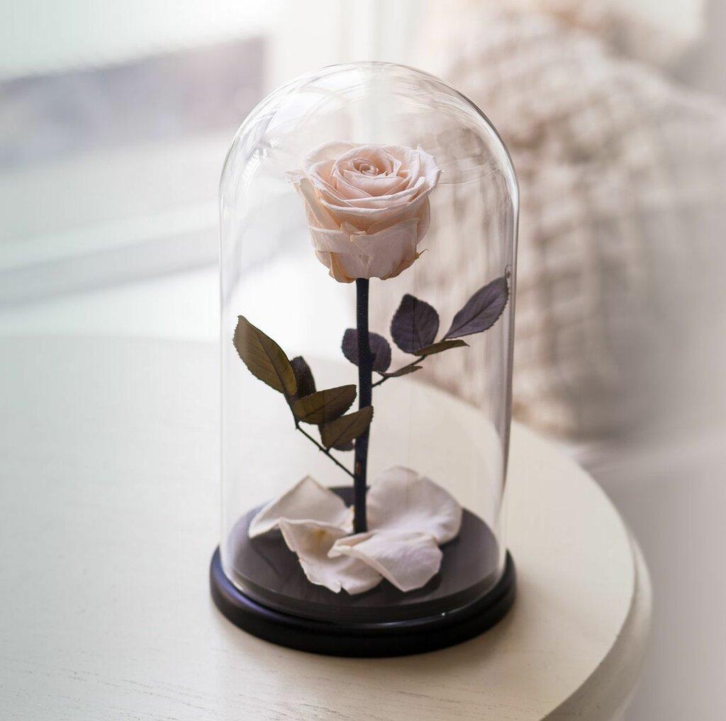 Цветы новгороде, купить цветы в банке в москве