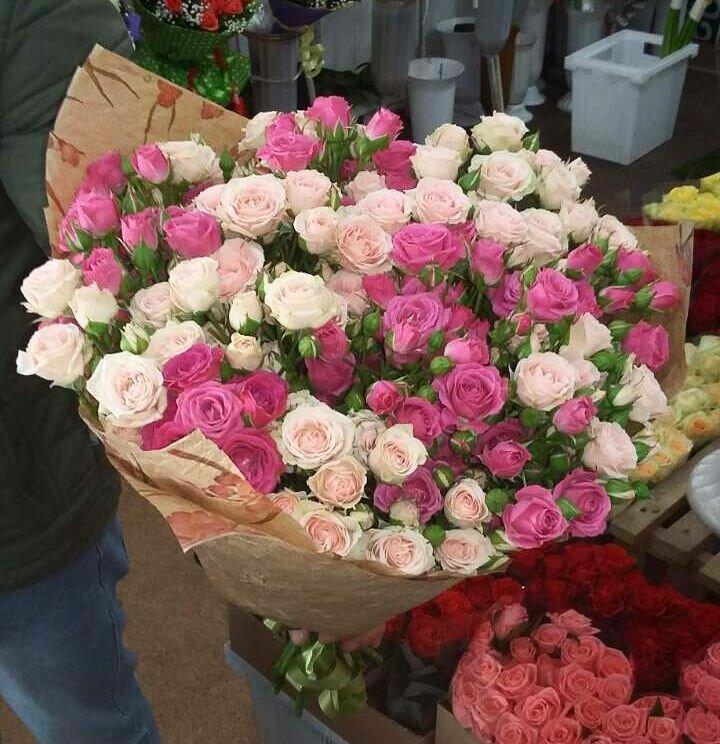 Цветы мыла, заказать доставку цветов в ростове на дону