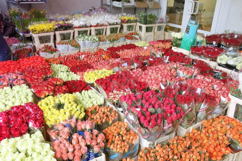 Невесты, цветы купить база