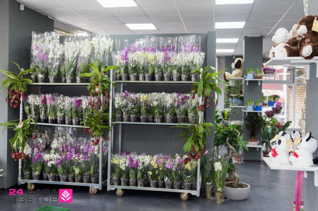 Склад магазин цветов на здолбуновской, невесты экзотичных цветов