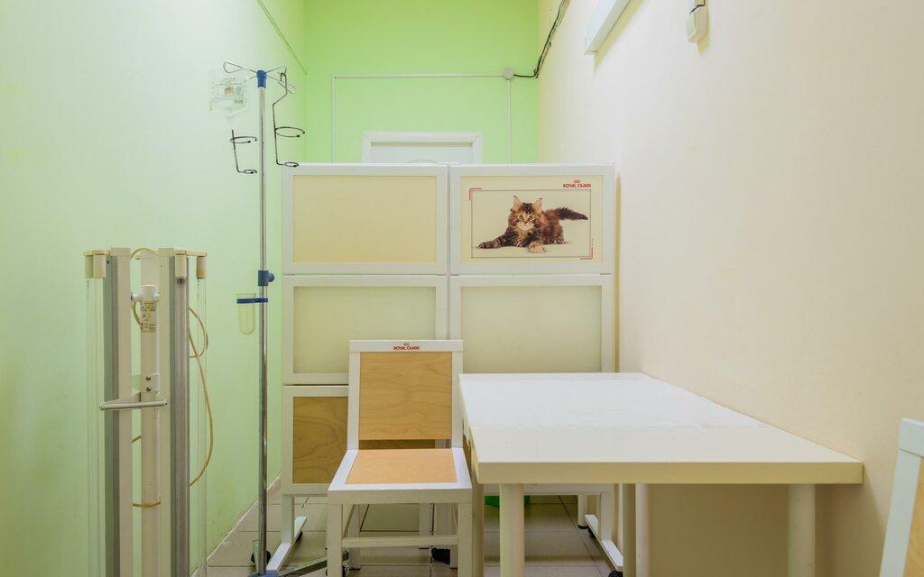 ветеринарная клиника — Ветеринарная клиника Элвет — Санкт-Петербург, фото №1