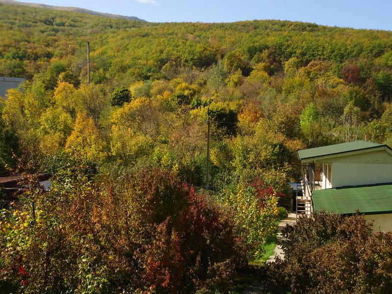 Домики у горной речки