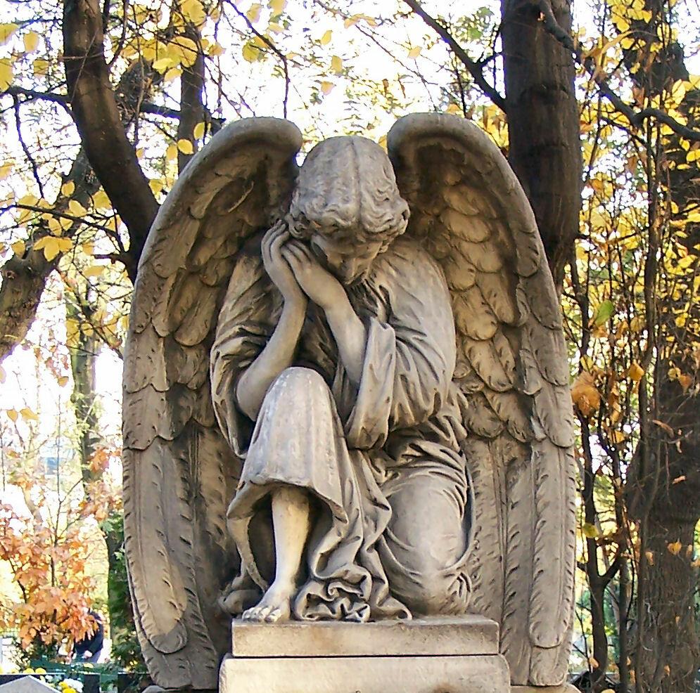 лучшие картинки скорбящих ангел взлетная это престижное