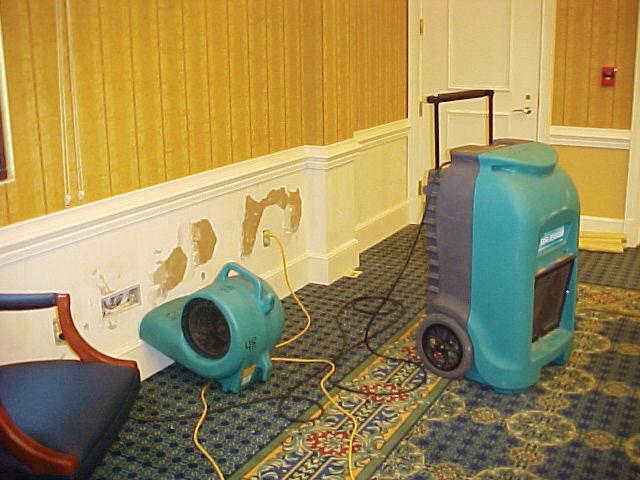 как просушить квартиру после затопления самостоятельно