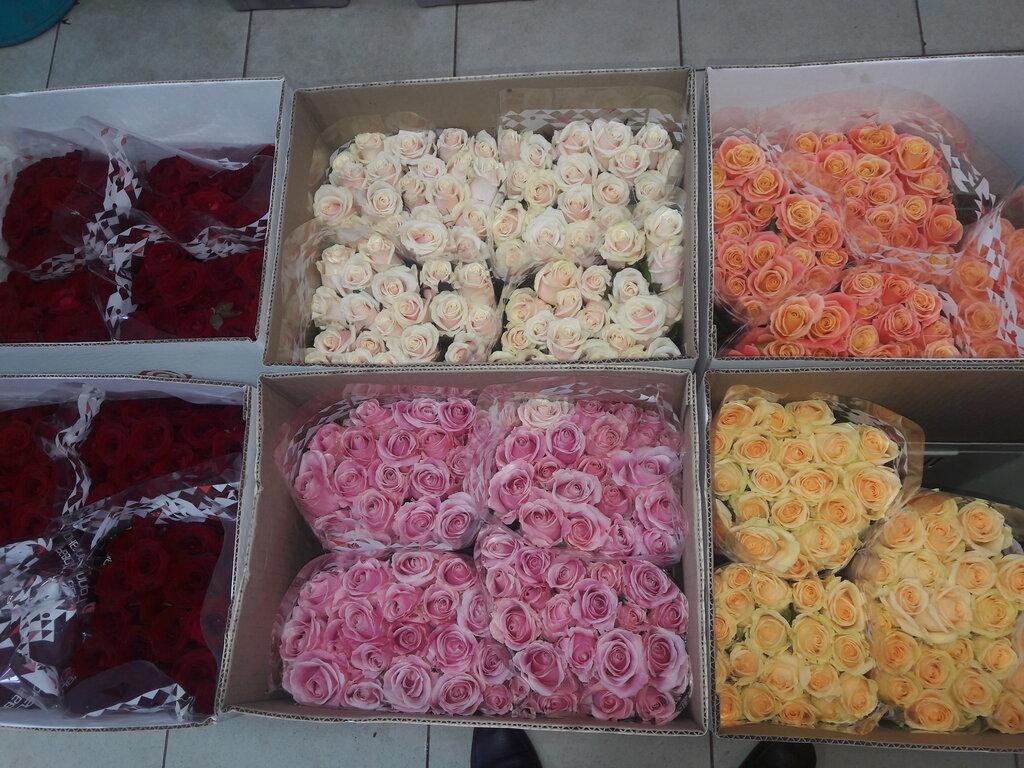 Букеты цветов, обзор оптовый рынок цветов ростов черевичкина