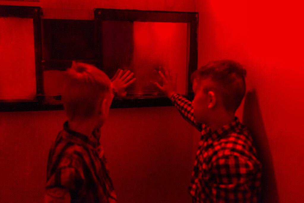 квесты — Фотолаборатория призрака — Санкт-Петербург, фото №7