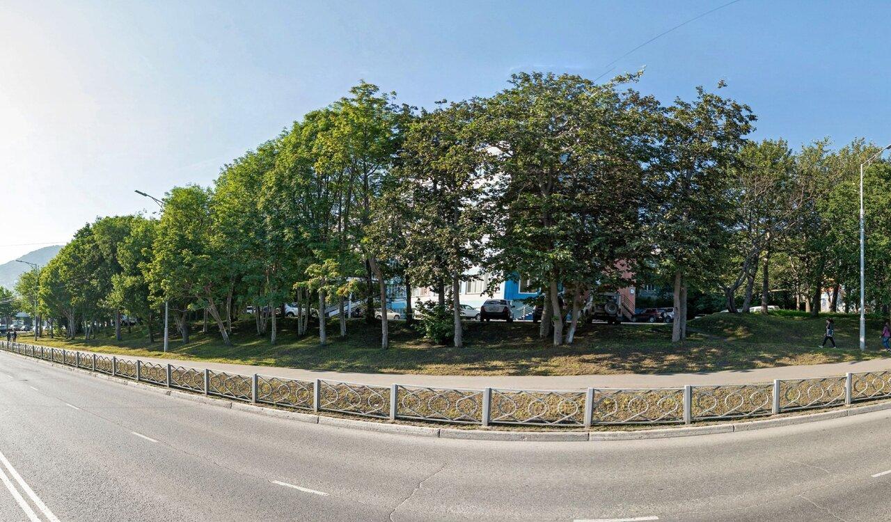 петропавловск камчатский пограничная улица фото захватил власть
