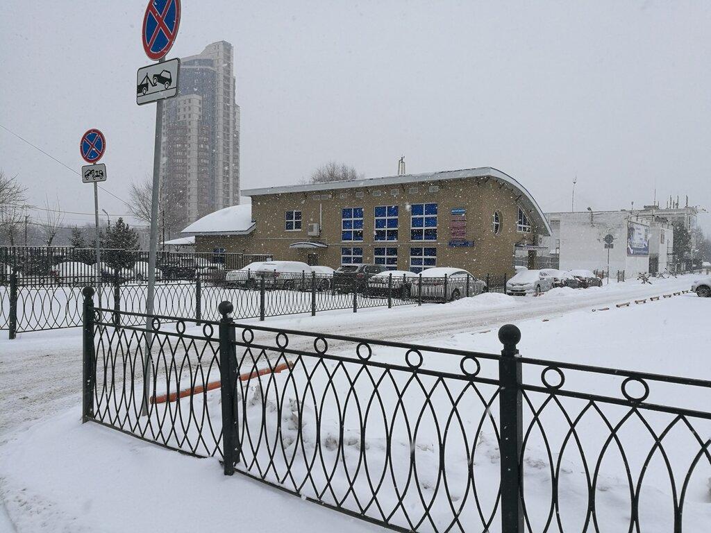 Москва автосалон шарк моторс аренда авто в коста брава без залога