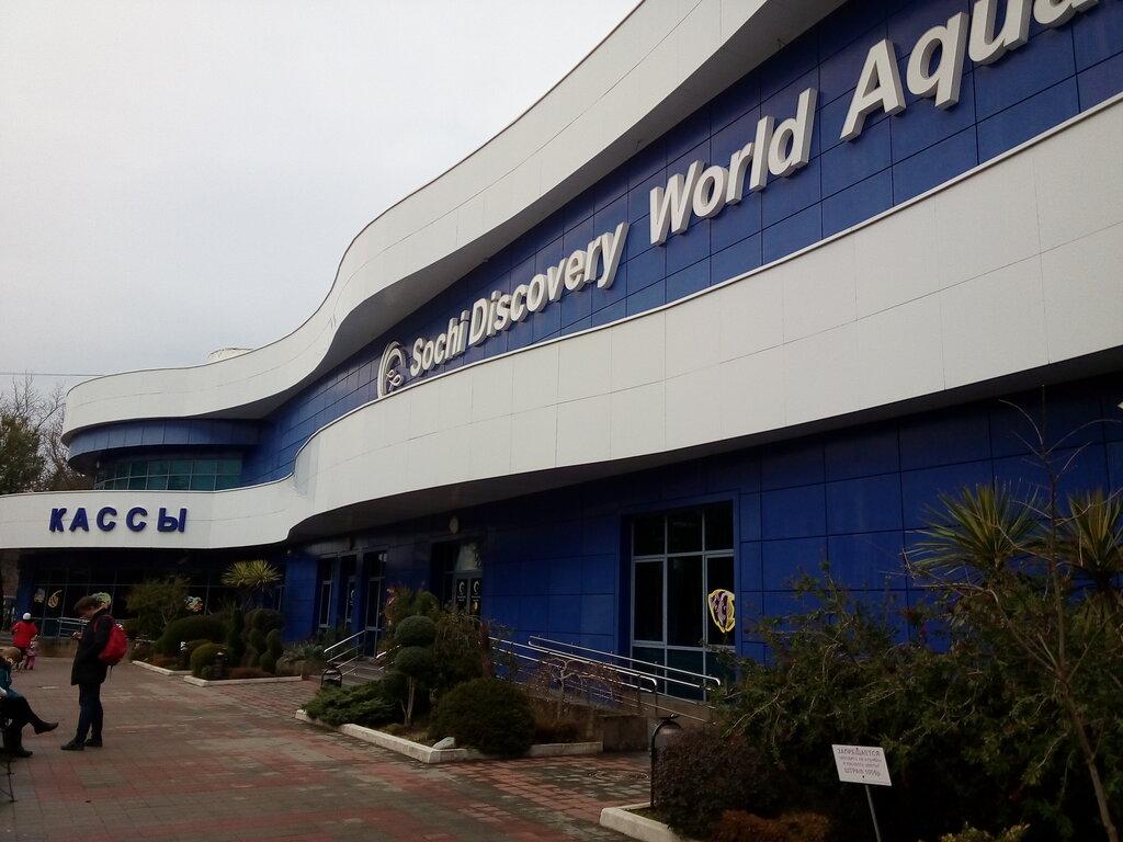 дельфинарий, океанариум — Океанариум Sochi Discovery World Aquarium — Сочи, фото №2