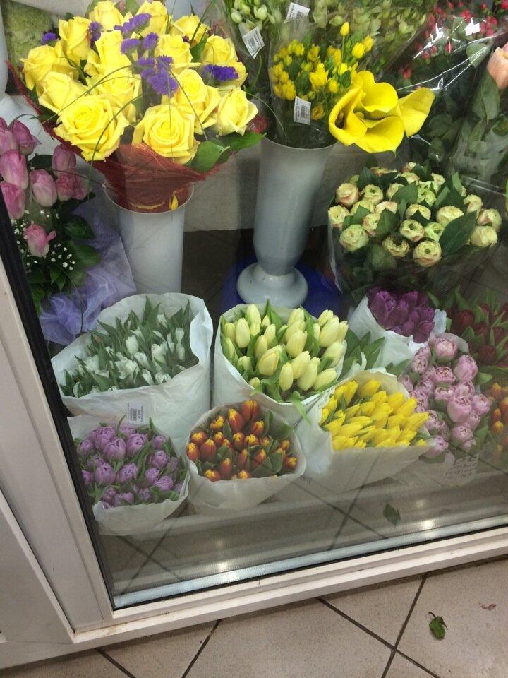 Блюмен бюро холланд доставка цветов тольятти