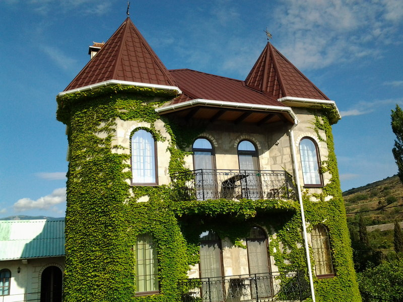 Замок Алустон