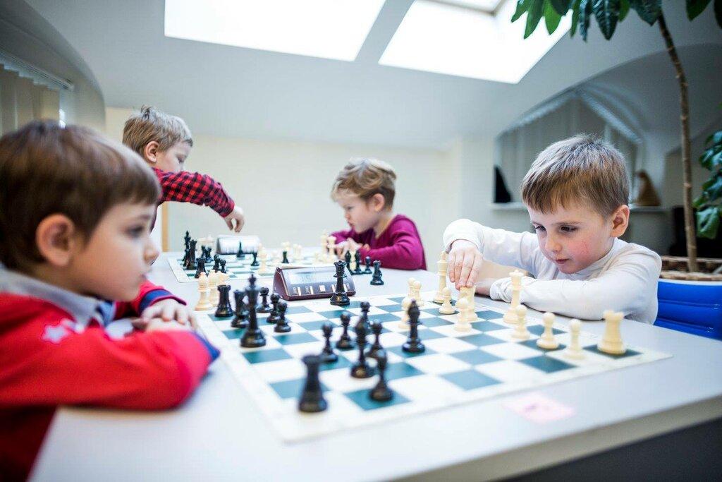 тени, шахматный кружок картинки можно ежедневно, кроме