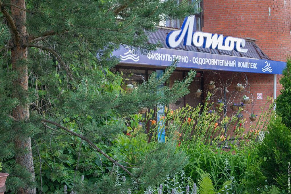 бассейн — Лотос — посёлок городского типа Богородское, фото №1