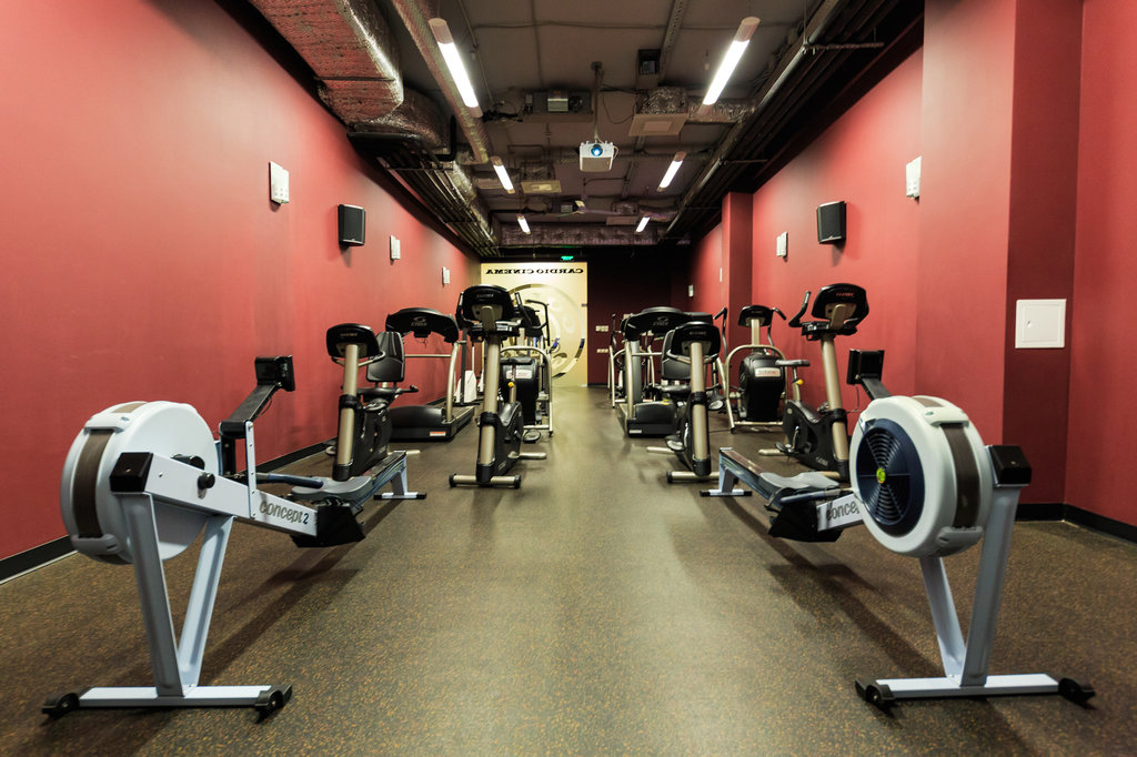 golds gym fitness equipment - 1024×682