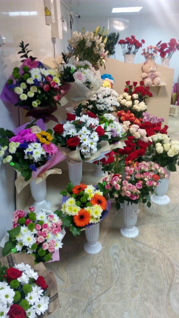 Ул. 50 лет октября магазин цветы оптом, букет алые паруса